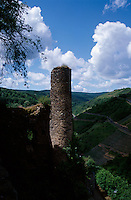 View of castle tower and vineyards from Burg Rheinfels castle, St. Goar, Germany