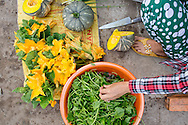 squash, squash blossums and squash tendrils for sale in a village market on the island's south side