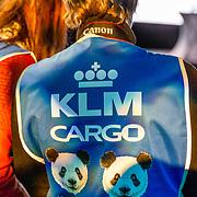 NLD/Amsterdam/20170412- Aankomst reuzenpanda's WU WEN en XING YA in Nederland, KLM cargo hesje met pandakoppen