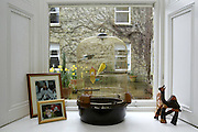 2/4/2002 .Sunday Timews Property.One of the downstairs windows at Mount Loftus in Kilkenny..Picture Dylan Vaughan