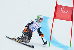 Anna Schaffelhuber, Women's Giant Slalom at the 2014 Sochi Winter Paralympic Games, Russia