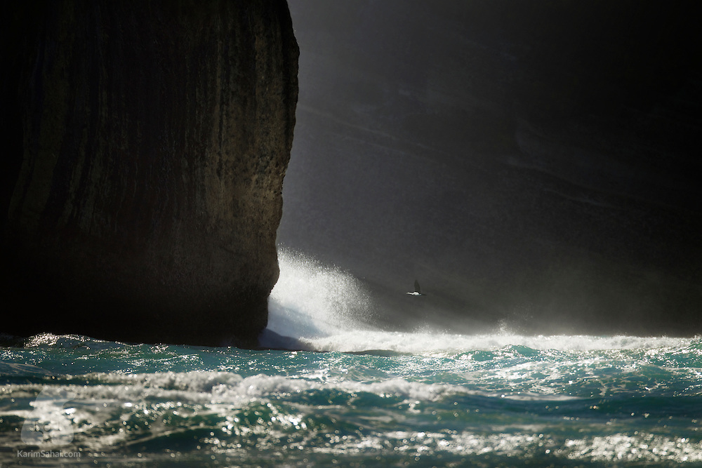 A distant white-breasted cormorant flies above the crashing waves, near Cape Farewell Arch, South Island, New Zealand.<br /> <br /> Cape Farewell - a headland of Cretaceous quartz sandstone - is the South Island's most northerly point and was named by Captain James Cook upon leaving New Zealand in 1770. To its east lies the shifting sand dunes of Farewell Spit, a 15-mile long formation composed of erosional quartz sand from the west coast of the South Island, transported by the coastal drift.