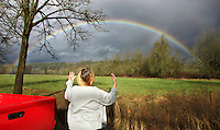 An unidentified motorist is struck by a rainbow near Orting, Monday afternoon, January 17, 2011.  Recent rains and unseasonably warm temperatures in the mountains threatened the area with flooding early Monday morning when rivers, including the upper Puyallup, rose above flood stage.  By Monday afternoon Pierce County was spared significant threat of flooding.(Janet Jensen/Staff photographer)