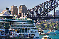 Cruise Ship, Sydney Cove