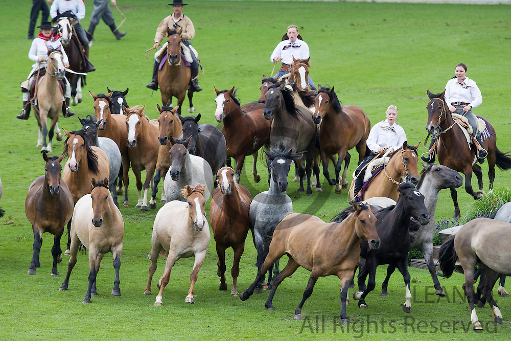 Openings ceremonie met Criollos en Gaucho<br /> World Equestrian Festival, CHIO Aachen 2012<br /> © DigiShots
