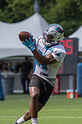 Carolina Panthers Running back Elijah Holyfield (21) catches a pass during training camp at Wofford College, Sunday, August 11, 2019, in Spartanburg, S.C. (Brian Villanueva/Image of Sport)