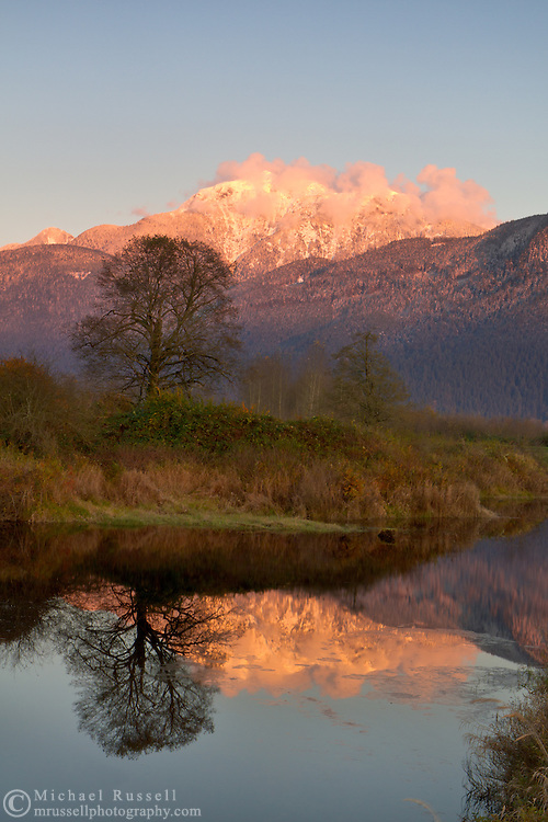 Mount Blandshard (the Golden Ears) is reflected in a pond at the Pitt-Addington Marsh in Pitt Meadows, British Columbia