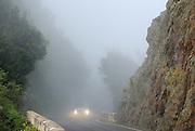 Spanien, Kanarische Inseln, Teneriffa..Anaga Gebirge, Bergstraße im Nebel..|..Spain, Canary Islands, Tenerife..Anaga Hills, mountain road in fog