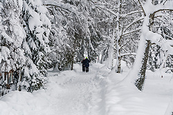 THEMENBILD - Personen bei einer Winterwanderung rund um den Schwarzsee, aufgenommen am 10. Jänner 2019, Kitzbuehel, Oesterreich // people on a winter hike around the Schwarzsee at Kitzbuehel, Austria on 2019/01/10. EXPA Pictures © 2019, PhotoCredit: EXPA/ Stefan Adelsberger