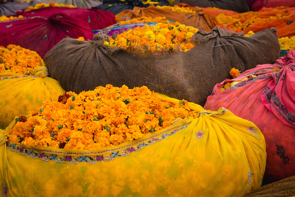 Brightly coloured flowers at Jaipur flower market