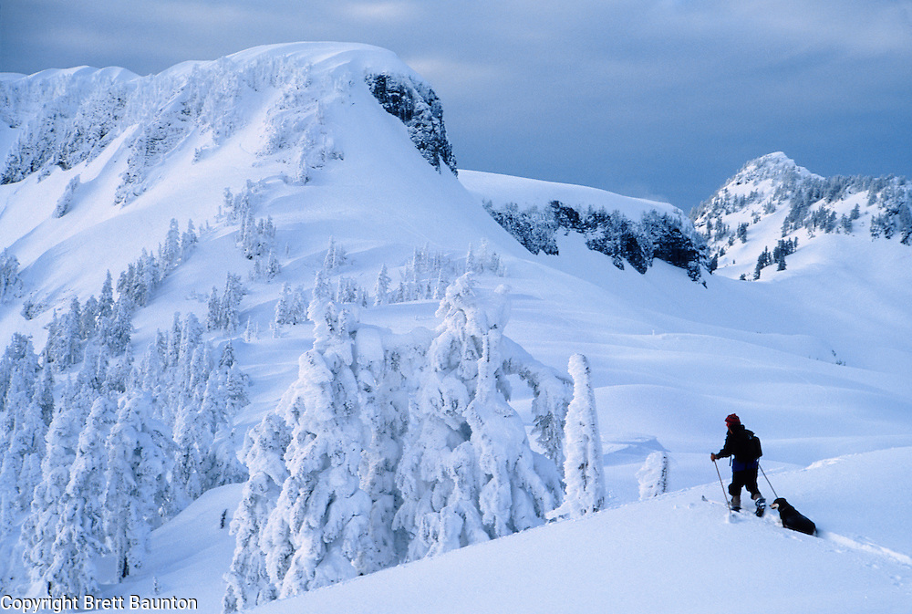 Mt. Baker, Cross Country Skiing, Backcountry Ski, Winter, Table Mt. WA