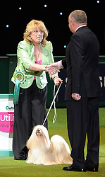 © Licensed to London News Pictures. 11/03/2012.Margaret Anderson and her Lhasa Apso, Elizabeth shows a look of disbelief as she is awarded the 2012 Best in Show at the 2012 Crufts.   Photo credit: Alison Baskerville/LNP