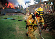 May 15, 2014 - Escondido, California, U.S -<br /> <br /> California Wildfires 2014 - Cocos Fire<br /> <br /> An Escondido Fire Department firefighter pulls hose line near burning home near Country Club Drive in Harmony Grove Thursday afternoon. <br /> ©Exclusivepix