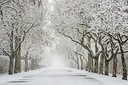Hamptons Seasons