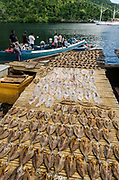Fish Drying<br /> Banda Neira Fish Market<br /> Banda Neira Island<br /> Banda Sea<br /> Indonesia