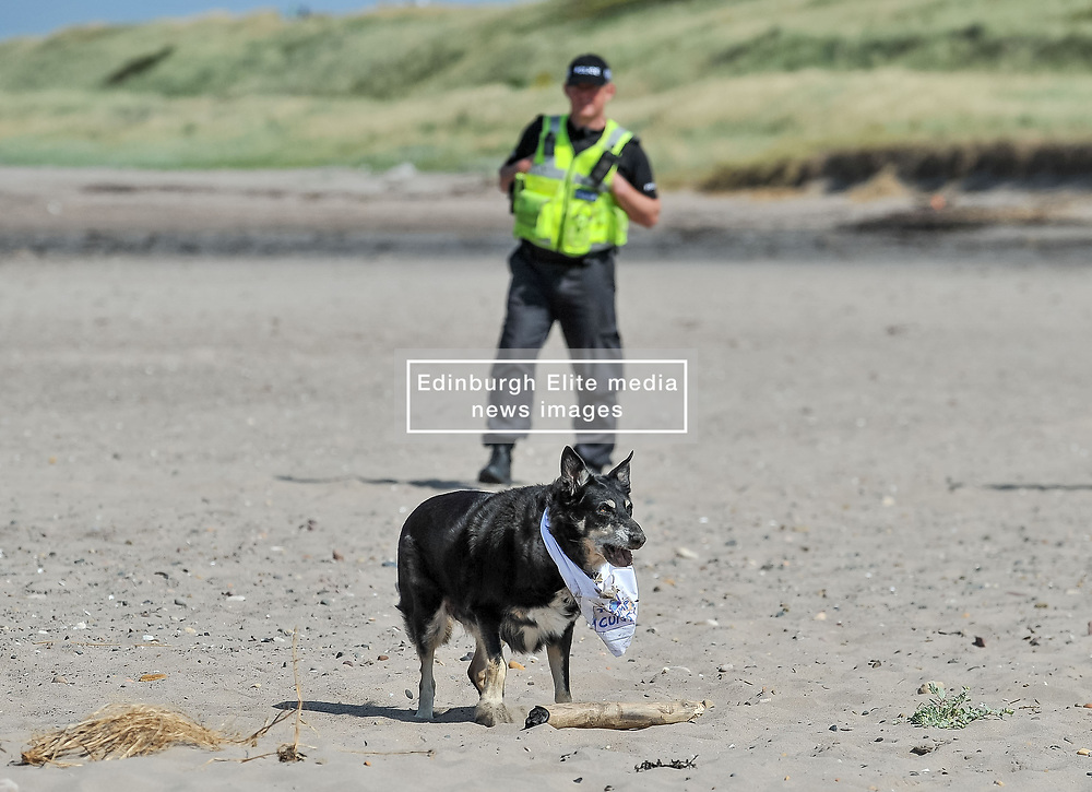 Pictured: Even a dog at the protest was wearing an anti Trump bandana.<br /> <br /> Protesters gathered amid tight security at the Trump Turnberry resort, where President Trump and his wife Melania are staying on their trip to Scotland.<br /> <br /> © Dave Johnston / EEm