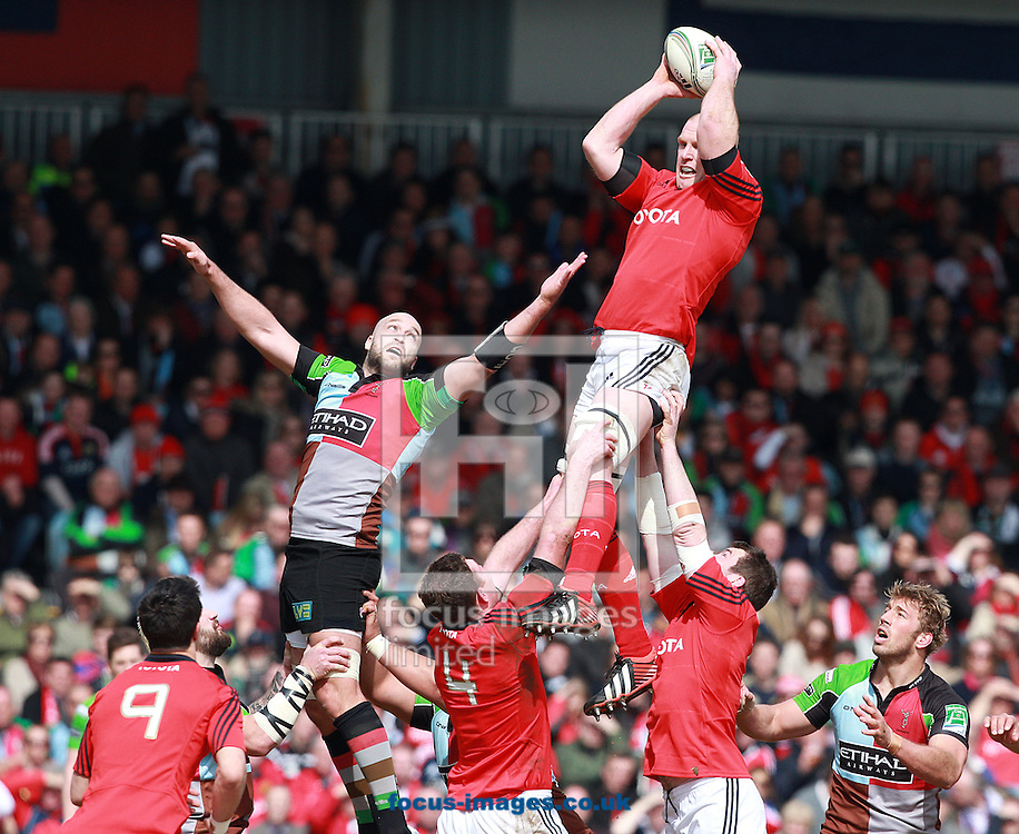 Picture by Paul Terry/Focus Images Ltd +44 7545 642257.07/04/2013.George Robson ( L ) of Harlequins is beaten to the ball by Paul O'Connel of Munster in a line out  during the Heineken Cup match at Twickenham Stoop , London.