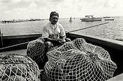 Sponge Fishermen working in the waters of Biscayne Bay, Florida. The men are mostly Cuban immigrants who use to harvest sponges in Cuba. in 1999 federal officials outlawed sponging in the park, they curtailed the livelihood of about 40 sponge fishermen who were forced to move their operations to areas with fewer and poorer-quality sponges. In the process authorities dealt a near fatal blow to an industry powered largely by Cuban exiles, who had sponged for generations in their native land. Despite the ban some immigrant fishermen simply refused to quit.