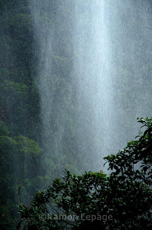 La Gran Sabana, Venezuela, 14-04-2011.Caída de agua de una cascada formada por la lluvia en el Camino hacia la cima del Roraima tepuy en La Gran Sabana.  Localizada al sur de Venezuela en el macizo Guayanés en la parte sureste del Estado Bolívar hasta la frontera con Brasil. En ella conviven diversos grupos indígenas, entre ellos la etnia Pemón. La Gran Sabana forma parte de uno de los Parques Nacionales más extensos de Venezuela, el Parque Nacional Canaima. La Gran Sabana, 14 Abril  de 2011. .(Ramon Lepage / Orinoquiaphoto/ LatinContent/Getty Images)..Trail to Kukenam and Roraima tepui. Tepuis are large mesas that rise out of dense jungle in southeast Venezuela and adjacent Brazil and Guyana. Over 100 of these plateaus rise above the verdant landscape of this region, which is known in Venezuela as the Gran Sabana and also the Guyana Highlands. Tepuis are comprised of Precambrian sandstone, and are some of the oldest exposed rock formations in the world. Monte Roraima is one of the best known of the tepuis and has a labyrinth of rock forms and endemic plants on its summit..