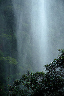 La Gran Sabana, Venezuela, 14-04-2011.Caída de agua de una cascada formada por la lluvia en el Camino hacia la cima del Roraima tepuy en La Gran Sabana.  Localizada al sur de Venezuela en el macizo Guayanés en la parte sureste del Estado Bolívar hasta la frontera con Brasil. En ella conviven diversos grupos indígenas, entre ellos la etnia Pemón. La Gran Sabana forma parte de uno de los Parques Nacionales más extensos de Venezuela, el Parque Nacional Canaima. La Gran Sabana, 14 Abril  de 2011. .(Ramon Lepage / Orinoquiaphoto/ LatinContent/Getty Images)..Trail to Kukenam and Roraima tepui. Tepuis are large mesas that rise out of dense jungle in southeast Venezuela and adjacent Brazil and Guyana. Over 100 of these plateaus rise above the verdant landscape of this region, which is known in Venezuela as the Gran Sabana and also the Guyana Highlands. Tepuis are comprised of Precambrian sandstone, and are some of the oldest exposed rock formations in the world. Monte Roraima is one of the best known of the tepuis and has a labyrinth of rock forms and endemic plants on its summit..