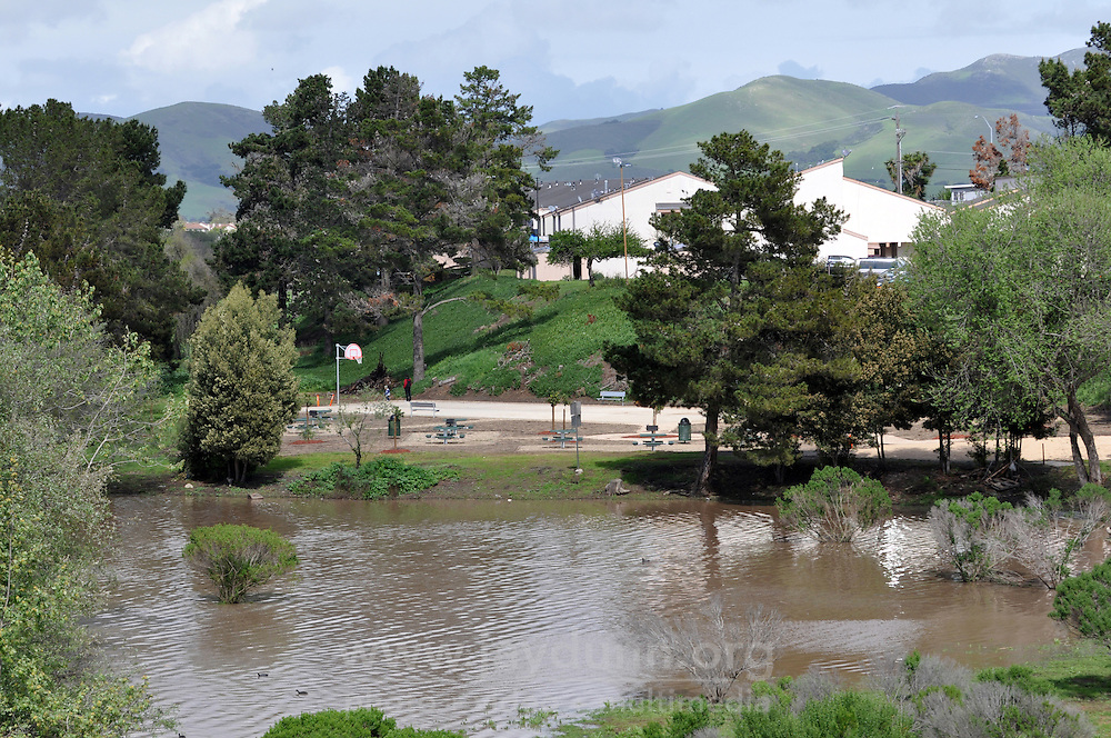 Nearly flooded after heavy spring rains, the nearly-completed Acosta Plaza Recreation Area is seen from E. Laurel Drive in Salinas, CA, on March 6th, 2016.