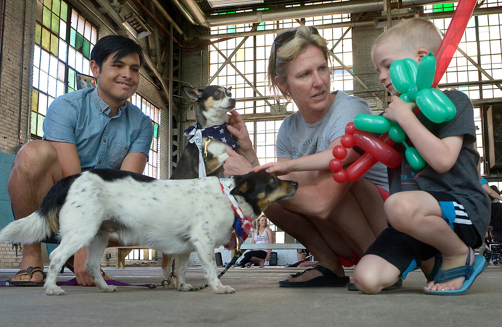 gbs070217a/ASEC -- Ivan Hernandez, left,  shows adoptable dogs, Max, left, and Manny, from the New Mexico Pets Alive to Laura Reardon of Albuquerque and her son Grady Reardon, 5, at the Rail Yards Market ABQ at 777 1st St NW on Sunday, July 2, 2017. It was Pet-triotic Day at the Rail Yards as organizations like New Mexico Pats Alive, Desert Paws NM Animal Rescue and Watermelon Mountain Ranch brought dogs available for adoption to the market. (Greg Sorber/Albuquerque Journal)