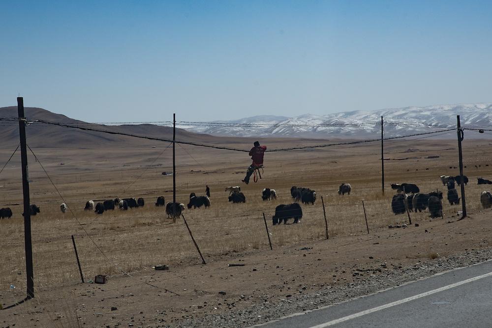 Telephone line repairs in Golok region, Tibet (Qinghai, China).