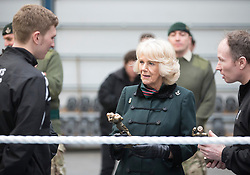 BULFORD- UK- 11-FEB-2015- Camilla, HRH The Duchess of Cornwall, Royal Colonel, 4th Battalion, The Rifles visits the training facilities and meets soldiers  at Ward Barracks, Bulford, Wiltshire. This is her last visit before the Battalion move from their home in Bulford to Aldershot later this year.<br /> Photograph by Ian Jones
