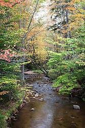 Unnamed stream along Bear Notch Road, off the Kancamagus HIghway, in early fall color.