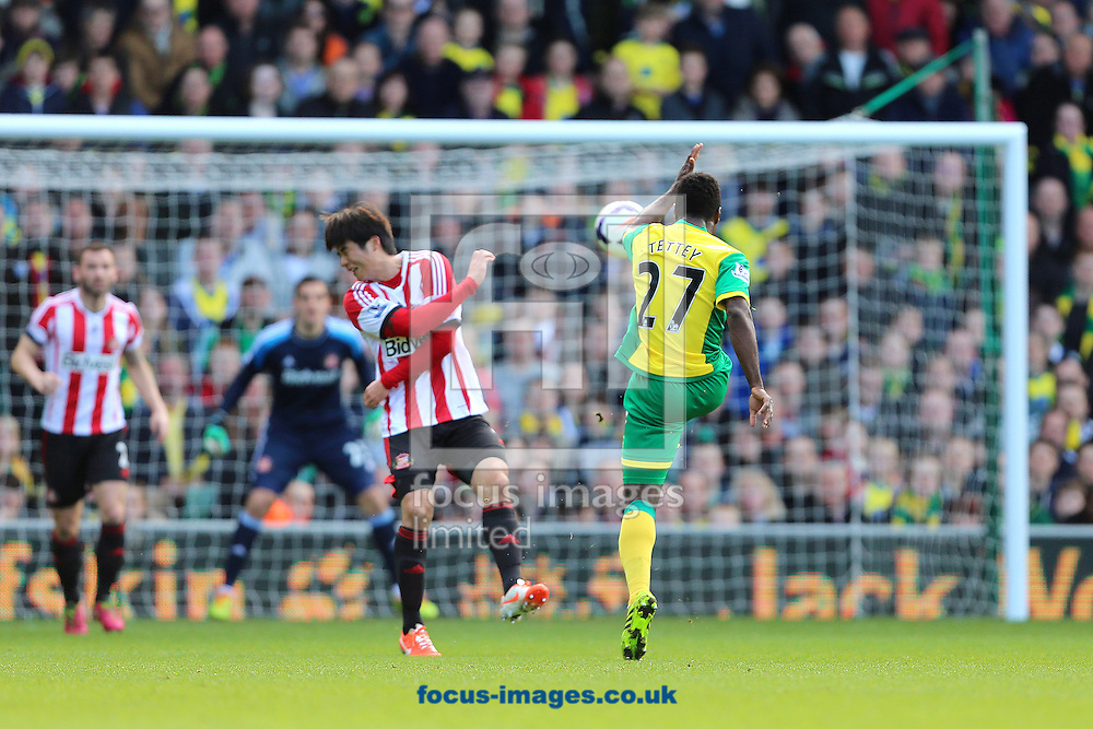 Alexander Tettey of Norwich City scores the second goal of the Barclays Premier League match against Sunderland at Carrow Road, Norwich<br /> Picture by Richard Calver/Focus Images Ltd +447792 981244<br /> 22/03/2014