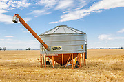 Mobile field bin grain silo in paddock after harvest <br />