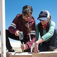 Dibe Yazhi Habitiin Community School seventh grade student KayDence Low Dog, left, and Hallie Casey, right, horticulture extension manager at Navajo Technical University, hammer a piece of curved rebar into the ground to stabilize the wood frame of the hoop house and hold it in place, Thursday, March 28 in Crownpoint.