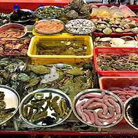 Mysterious Sea Creatures at Jagalchi Fish Market in Busan, South Korea<br />