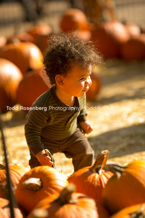 10/10/15 2:33:12 PM -- Chicago, IL, USA<br /> <br /> Lincoln Park Zoo Fall Festival <br /> <br /> . &copy; Todd Rosenberg Photography 2015