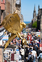 Detail of gold bird outside Gladstone's Land historic building on the Royal Mile in Lawnmarket in Edinburgh Old Town, Scotland, UK