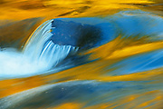 Rock and autumn colors reflected in Rushing River<br /> Rushing River Provincial Park<br /> Ontario<br /> Canada