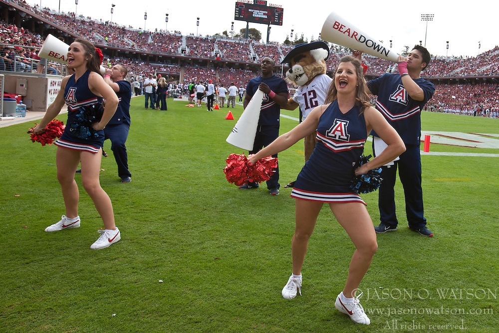 PALO ALTO, CA - OCTOBER 06: Arizona Wildcats cheerleaders perform on the sidelines against the Stanford Cardinal during overtime at Stanford Stadium on October 6, 2012 in Palo Alto, California. The Stanford Cardinal defeated the Arizona Wildcats 54-48 in overtime. (Photo by Jason O. Watson/Getty Images) *** Local Caption ***