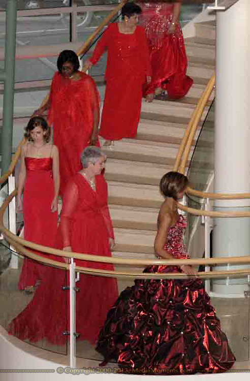 The models decend the stairs at the 2007 Wellness Connection Red Dress Gala, at the Schuster Performing Arts Center in Dayton, Saturday night, May 5th.