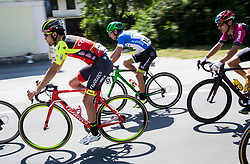 Matteo Draperi (ITA) of Wilier Triestina-Selle Italia, Tadej Logar (SLO) of Slovenija National Team during Stage 1 of 24th Tour of Slovenia 2017 / Tour de Slovenie from Koper to Kocevje (159,4 km) cycling race on June 15, 2017 in Slovenia. Photo by Vid Ponikvar / Sportida