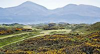 NEWCASTLE NORTHERN IRELAND-  Hole     , ROYAL COUNTY DOWN GC, nr. 3 van de wereldranglijst. .  COPYRIGHT KOEN SUYK