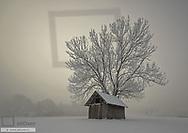 Winterlandschaft mit Nebel