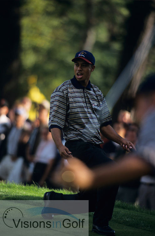 Tiger Woods misses a putt. 990927 / THE COUNTRY CLUB, BROOKLINE, BOSTON, USA / PHOTO MARK NEWCOMBE / 33rd RYDER CUP 1999