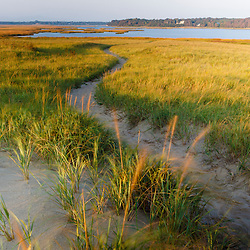 A sandy path through dune grass at Coast Guard Beach in the Cape Cod National Seashore. Eastham, Massachusetts.