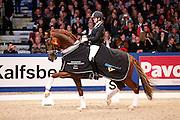 Emmelie Scholtens - Charmeur<br /> KWPN Hengstenkeuring 2013<br /> © DigiShots