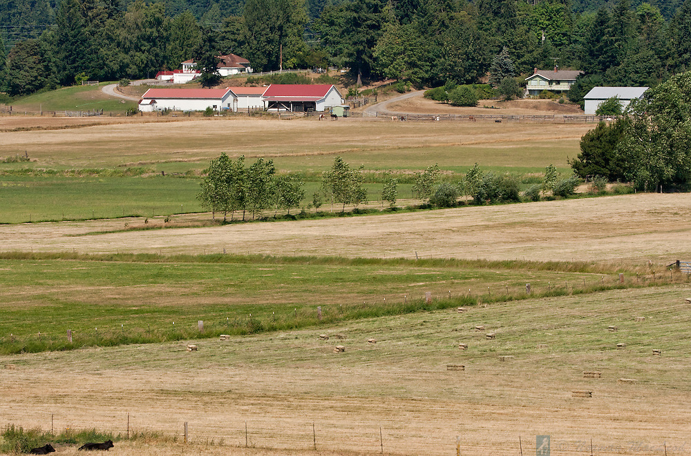 Center Valley farmlands during haying season, near Chimacum, Washington. Chimacum Creek flows through the valley, which features some of the world's best soils.