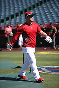 ANAHEIM, CA - JULY 26:  Kole Calhoun #56 of the Los Angeles Angels of Anaheim looks on during batting practice before the game against the Detroit Tigers at Angel Stadium on Saturday, July 26, 2014 in Anaheim, California. The Angels won the game in a 4-0 shutout. (Photo by Paul Spinelli/MLB Photos via Getty Images) *** Local Caption *** Kole Calhoun