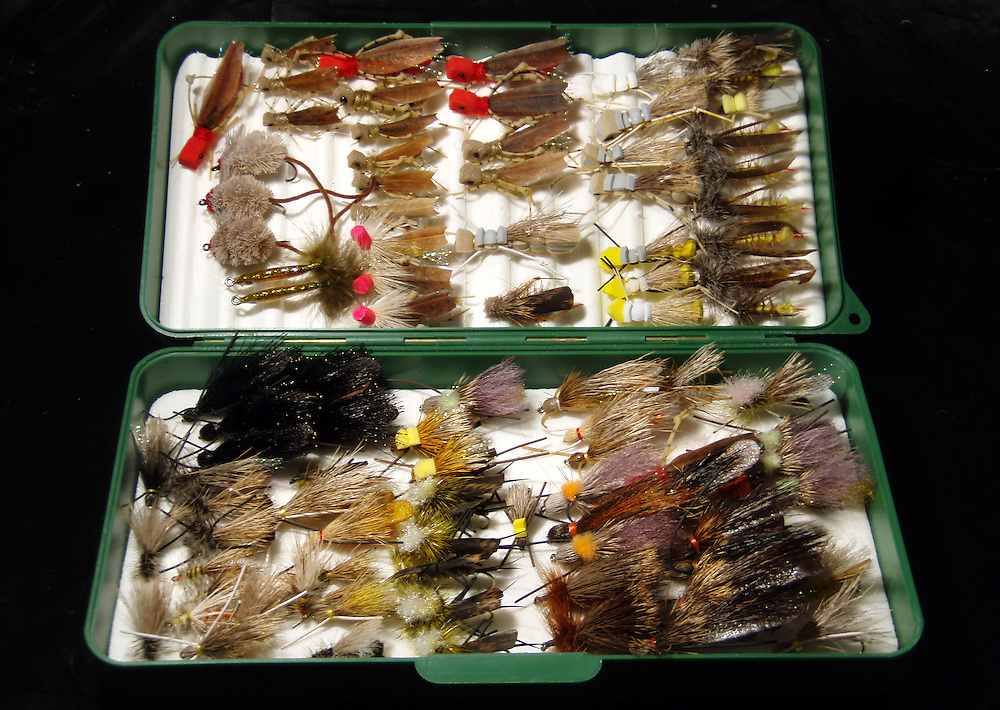 fly box full of terrestrial patterns.
