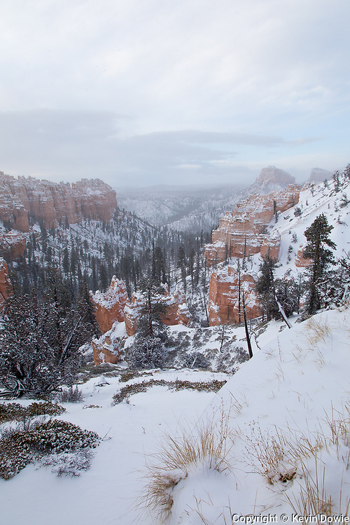 Early spring, Bryce Canyon