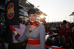 Motorsports / Formula 1: World Championship 2010, GP of Abu Dhabi, grid girl