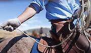 Jackson Hole Hereford Ranch, Lockhart Cattle Company<br /> <br /> David Stubbs / www.davidstubbs.com